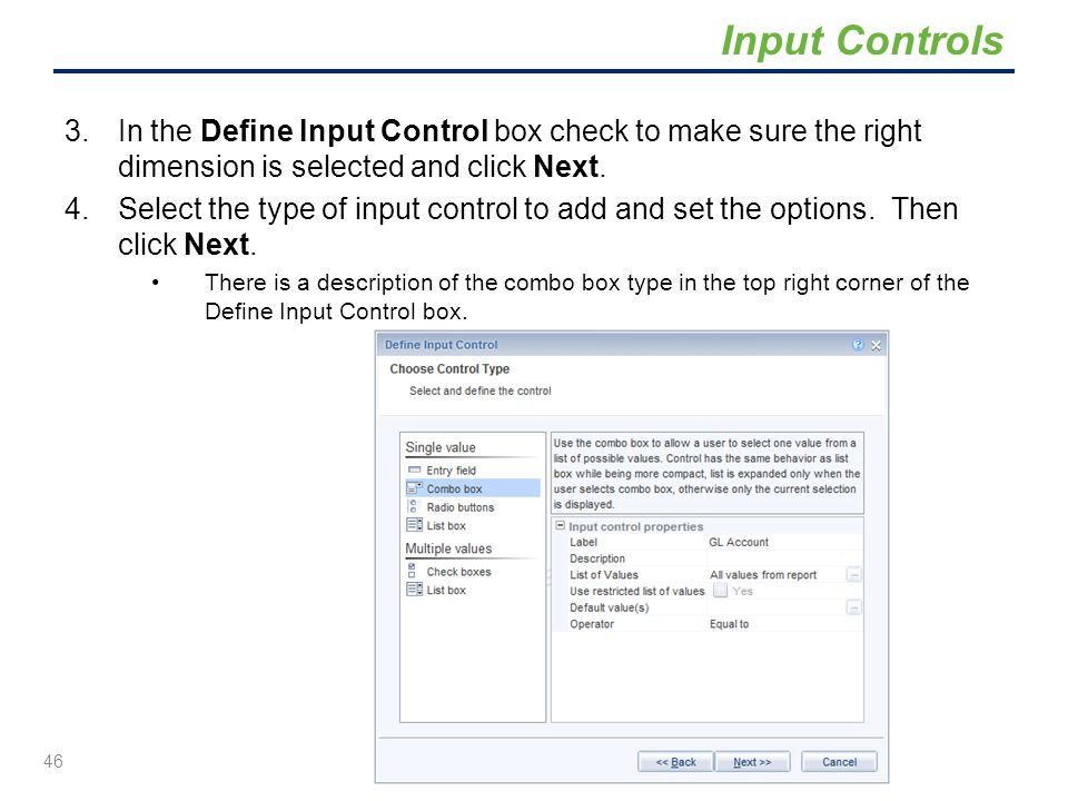Input Controls In the Define Input Control box check to make sure the right dimension is selected and click Next.