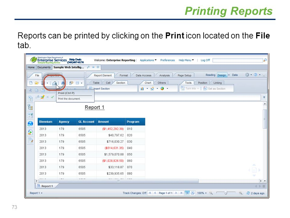 Printing Reports Reports can be printed by clicking on the Print icon located on the File tab.