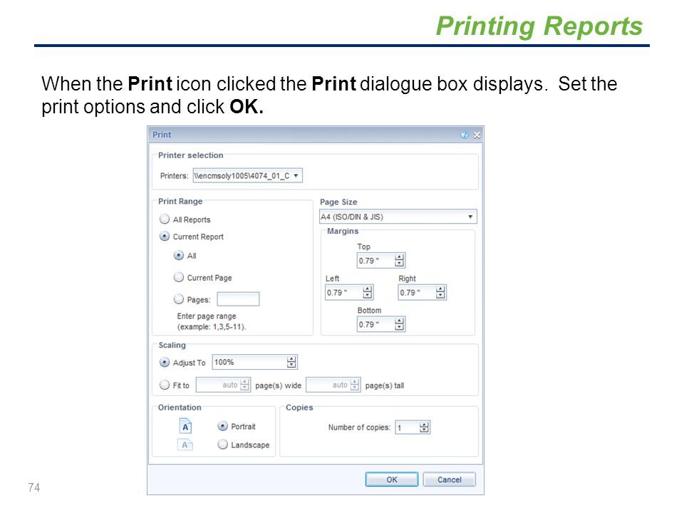 Printing Reports When the Print icon clicked the Print dialogue box displays.
