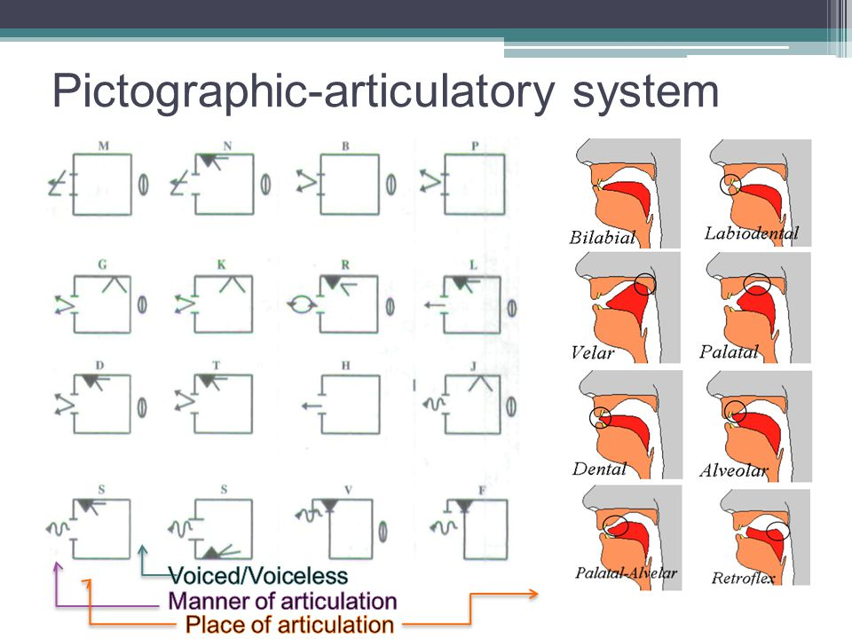 Pictographic-articulatory system
