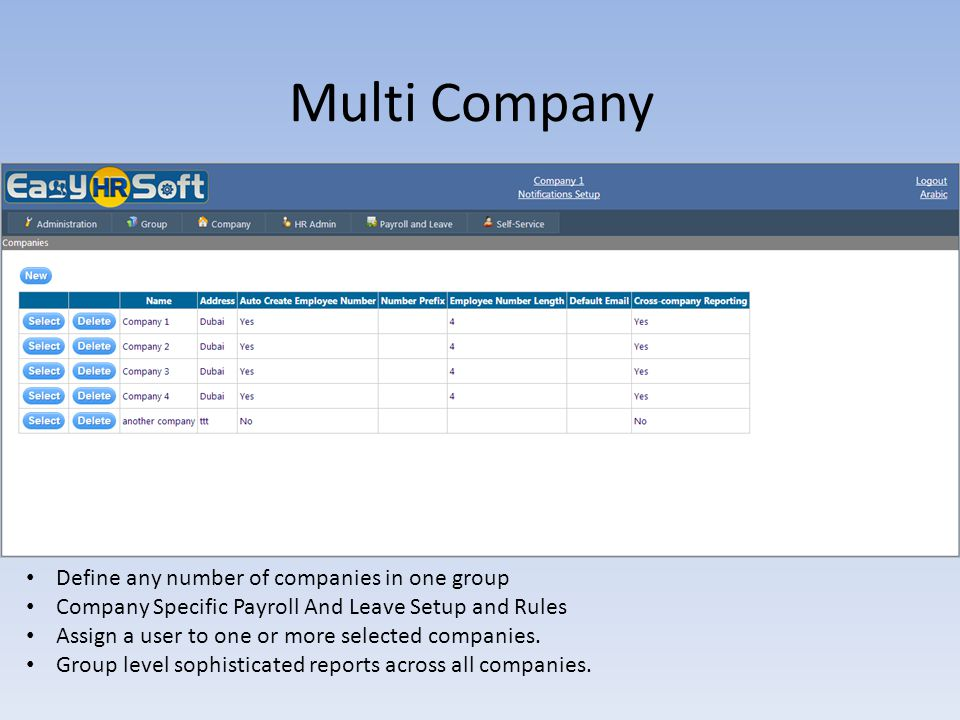 Multi Company Define any number of companies in one group
