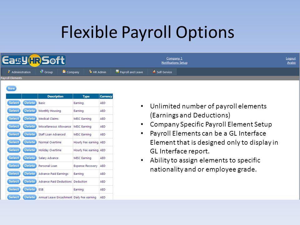 Flexible Payroll Options