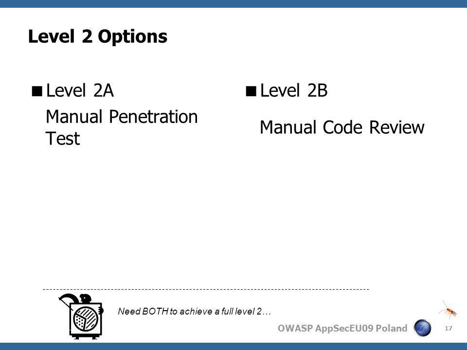 Manual Penetration Test Level 2B Manual Code Review