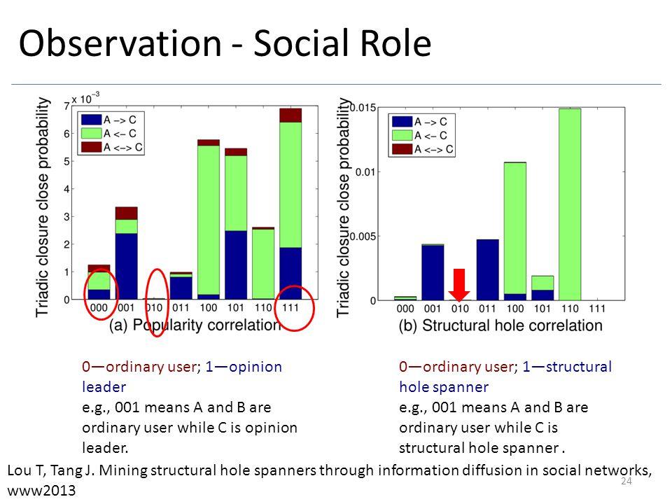 Observation - Social Role