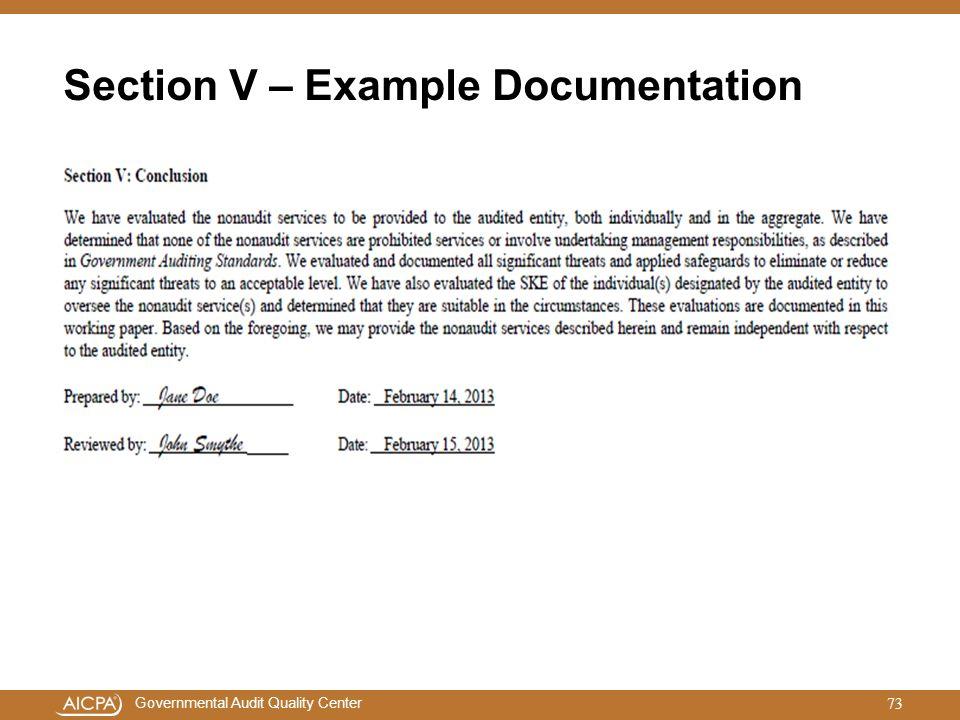 Section V – Example Documentation
