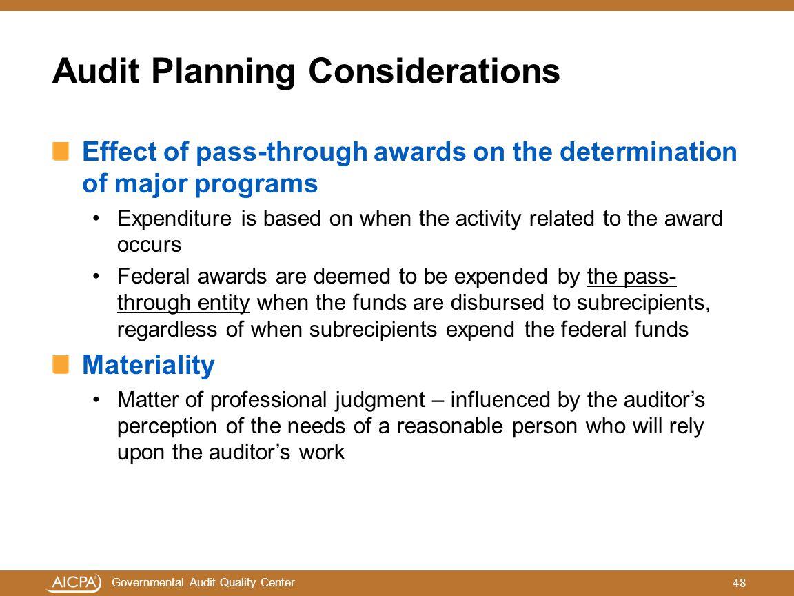 Audit Planning Considerations