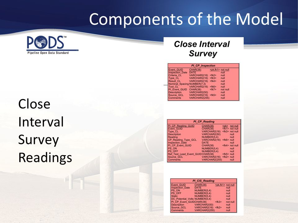 Components of the Model