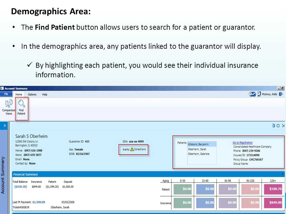 Demographics Area: The Find Patient button allows users to search for a patient or guarantor.