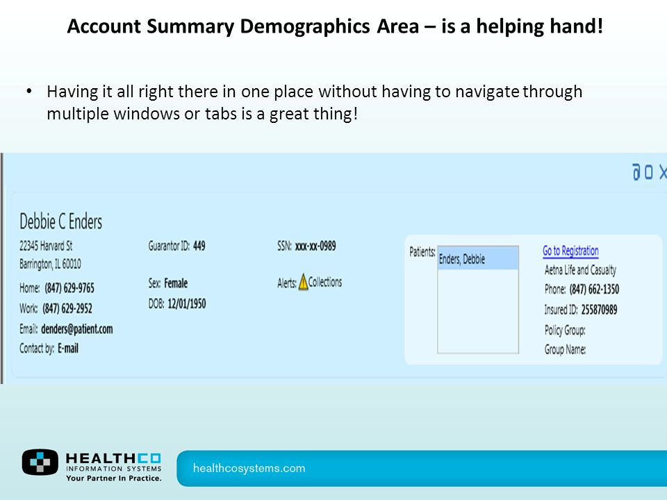 Account Summary Demographics Area – is a helping hand!