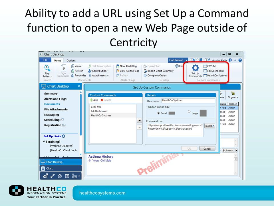Ability to add a URL using Set Up a Command function to open a new Web Page outside of Centricity