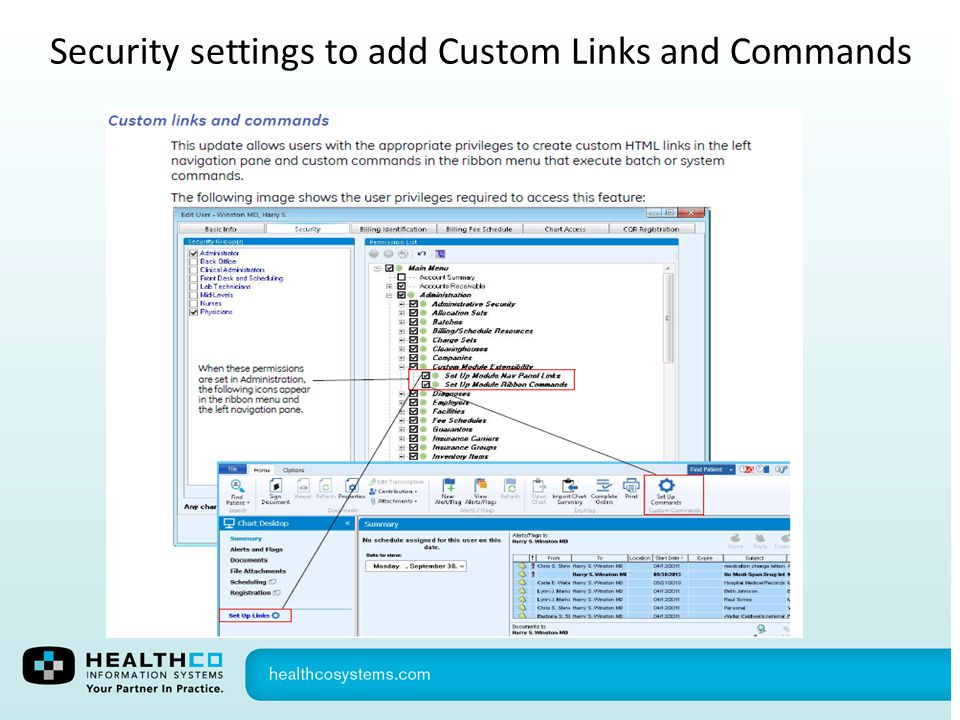 Security settings to add Custom Links and Commands