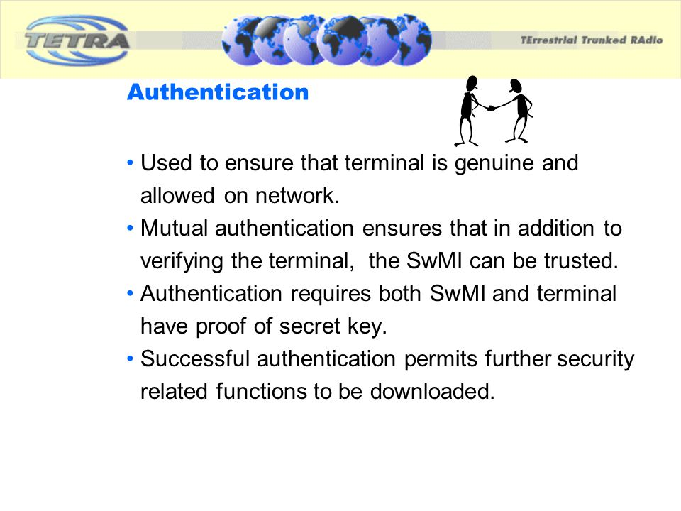 Used to ensure that terminal is genuine and allowed on network.
