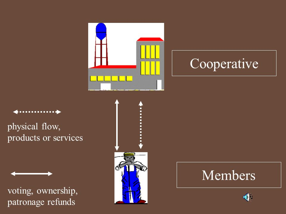 Cooperative Members physical flow, products or services