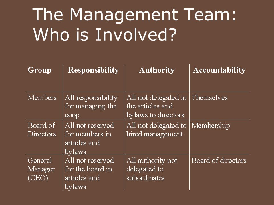 The Management Team: Who is Involved