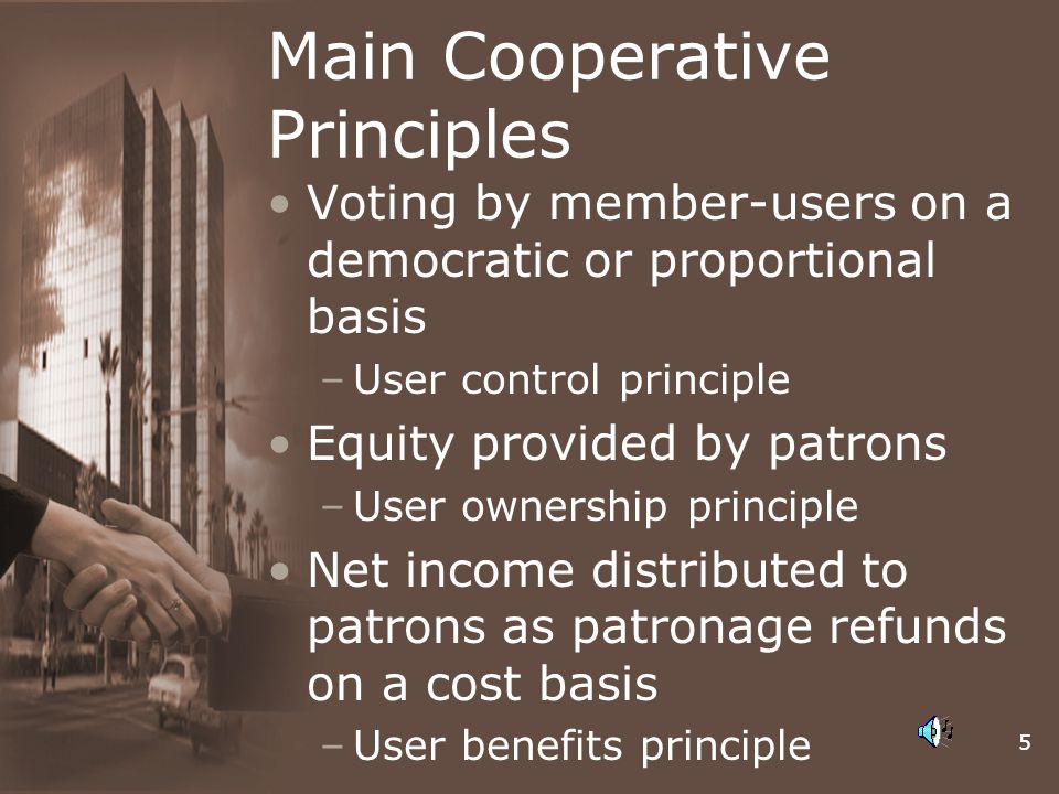 Main Cooperative Principles