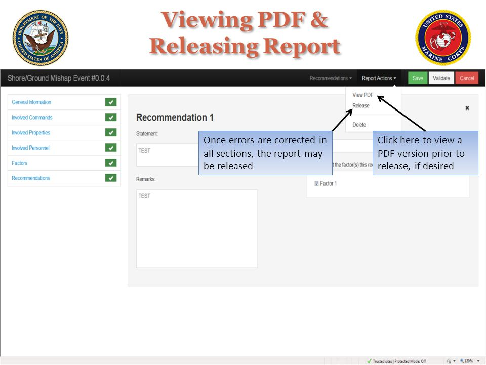 Viewing PDF & Releasing Report