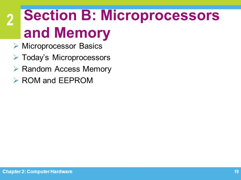 Section B: Microprocessors and Memory