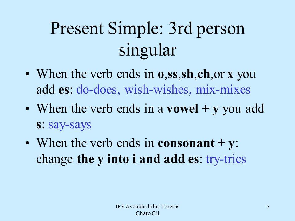 Present Simple: 3rd person singular