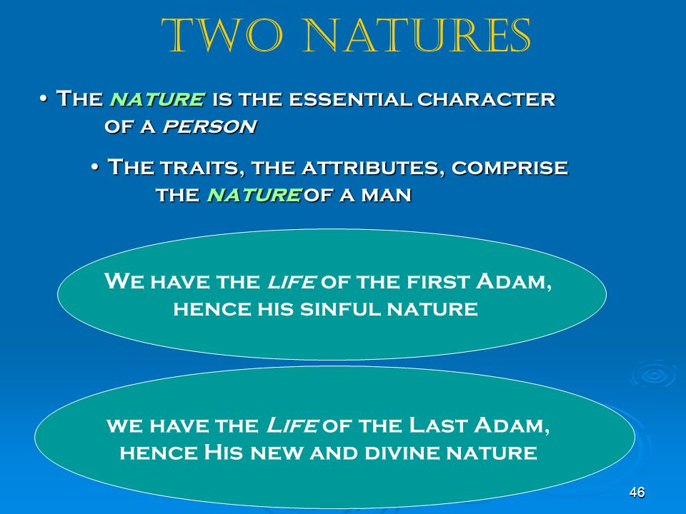 we have the Life of the Last Adam, hence His new and divine nature
