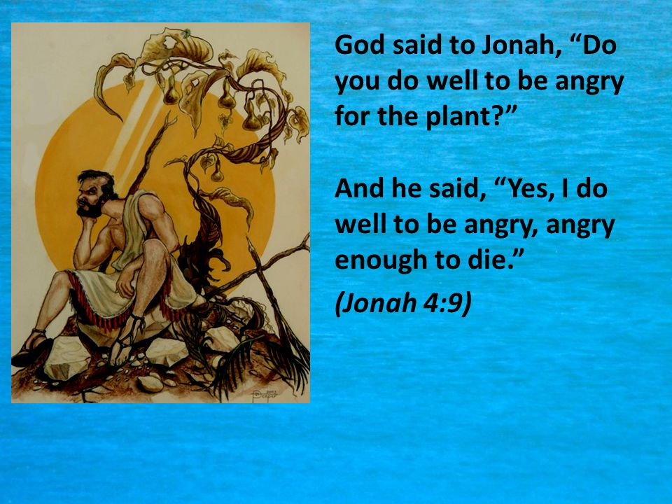 God said to Jonah, Do you do well to be angry for the plant
