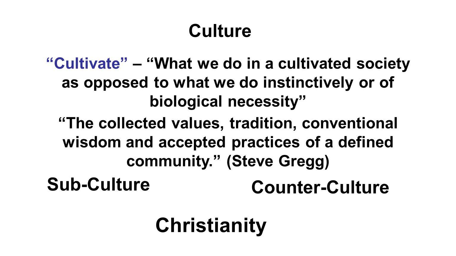 Christianity Culture Sub-Culture Counter-Culture