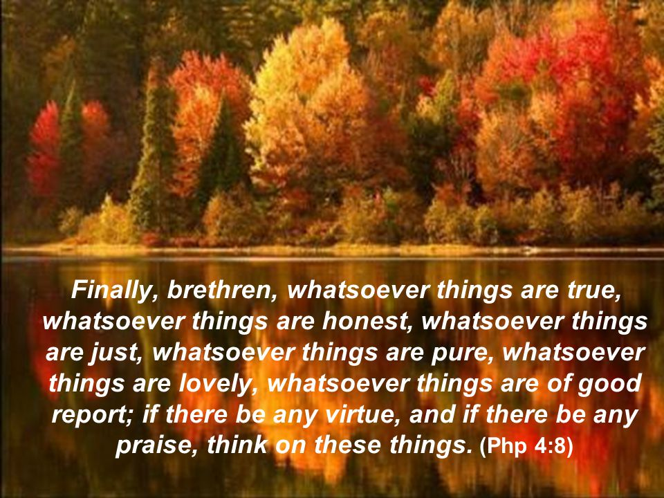 Finally, brethren, whatsoever things are true, whatsoever things are honest, whatsoever things are just, whatsoever things are pure, whatsoever things are lovely, whatsoever things are of good report; if there be any virtue, and if there be any praise, think on these things.
