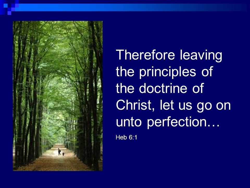 Therefore leaving the principles of the doctrine of Christ, let us go on unto perfection…