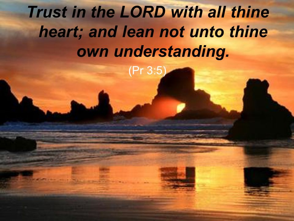 Trust in the LORD with all thine heart; and lean not unto thine own understanding.