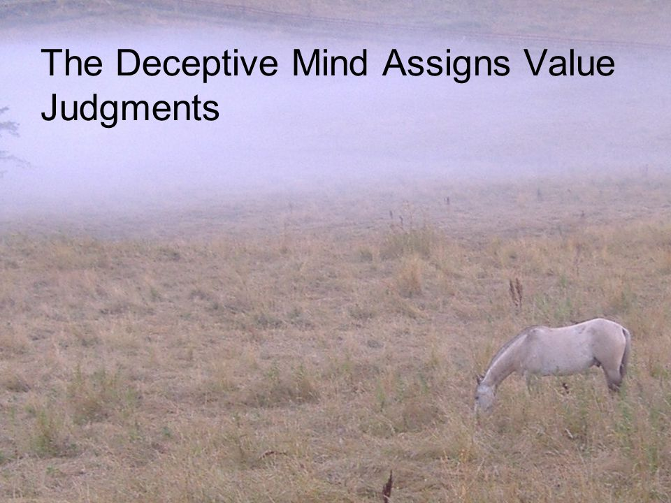 The Deceptive Mind Assigns Value Judgments