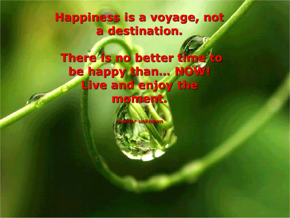 Happiness is a voyage, not a destination.