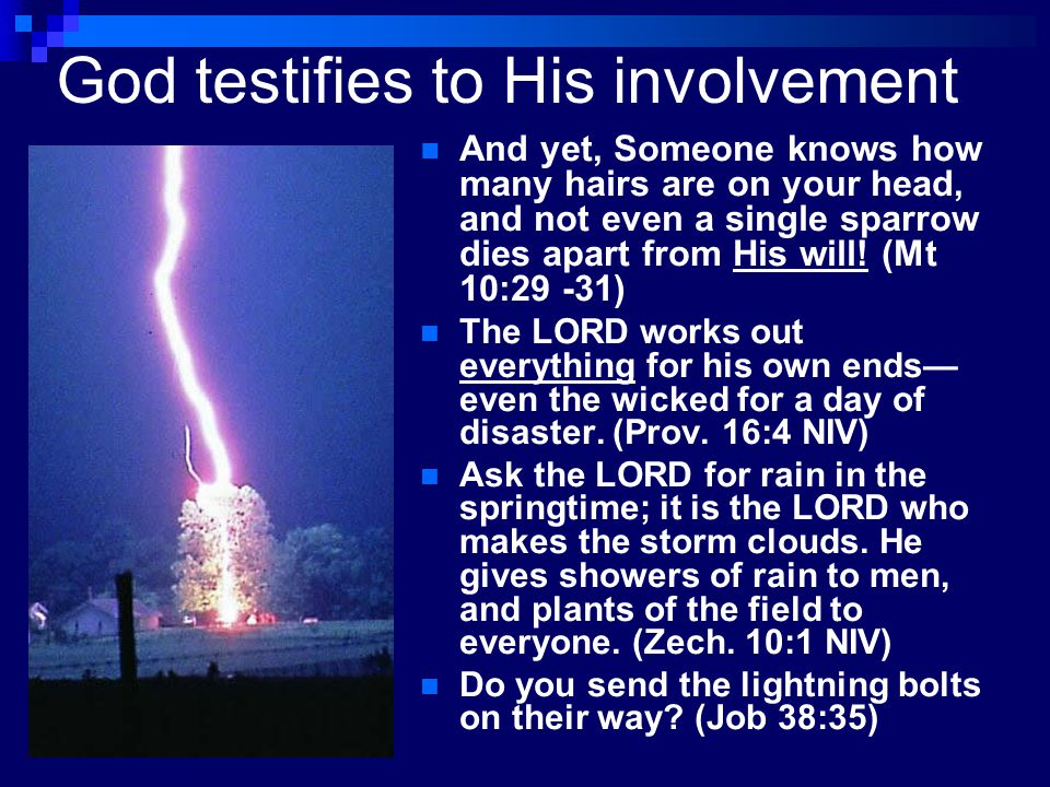 God testifies to His involvement