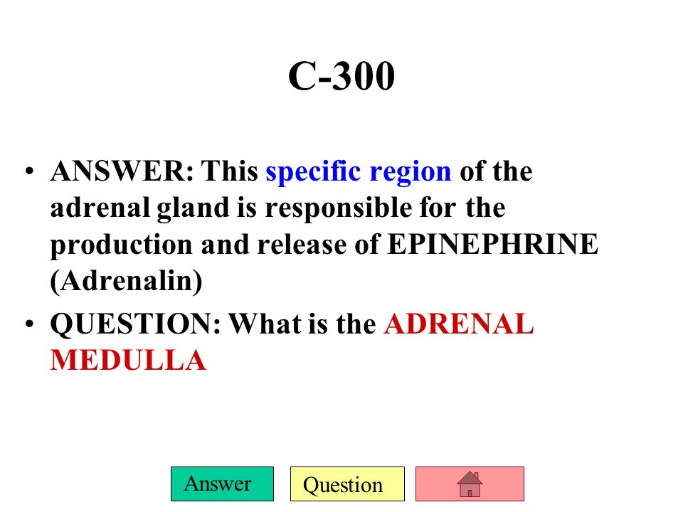 C-300 ANSWER: This specific region of the adrenal gland is responsible for the production and release of EPINEPHRINE (Adrenalin)