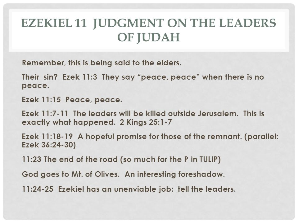 Ezekiel 11 Judgment on the Leaders of Judah