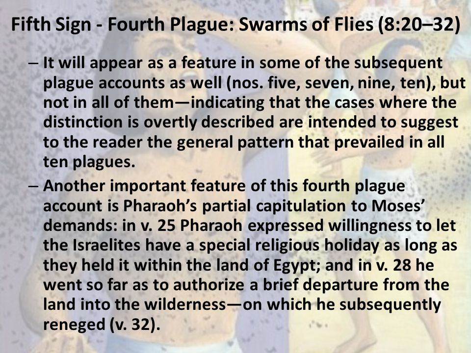 Fifth Sign - Fourth Plague: Swarms of Flies (8:20–32)