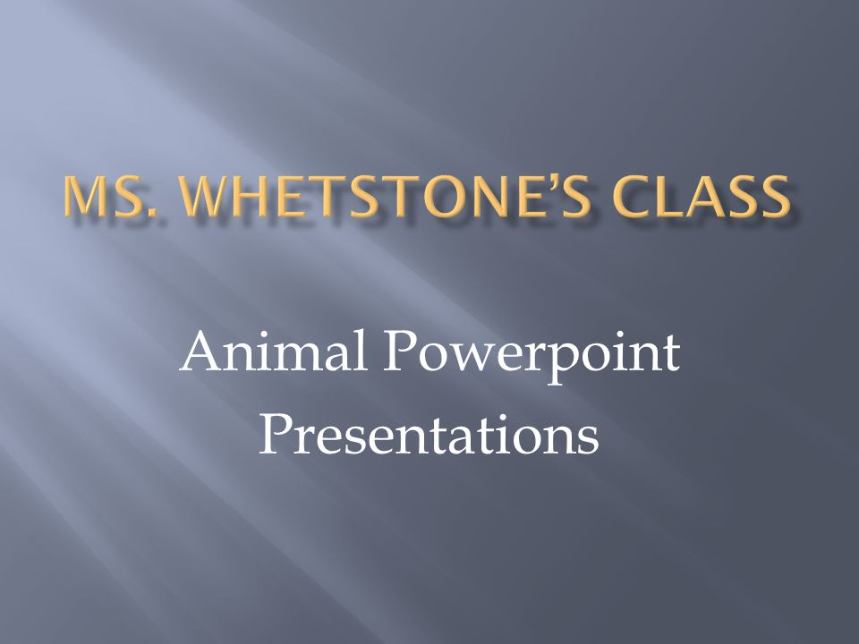 Animal Powerpoint Presentations