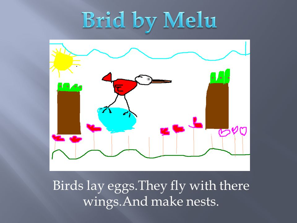 Birds lay eggs.They fly with there wings.And make nests.