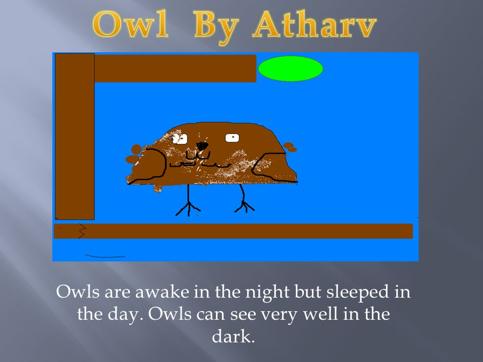Owl By Atharv Owls are awake in the night but sleeped in the day.