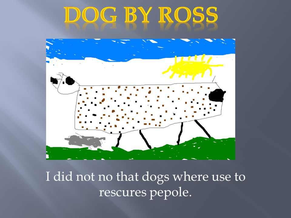 I did not no that dogs where use to rescures pepole.