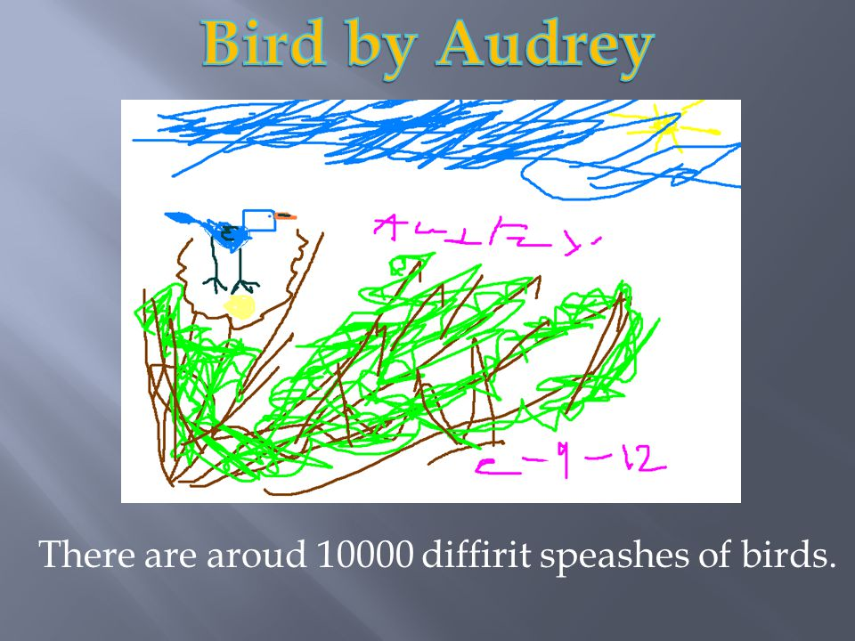 There are aroud 10000 diffirit speashes of birds.
