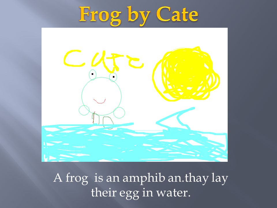 A frog is an amphib an.thay lay their egg in water.