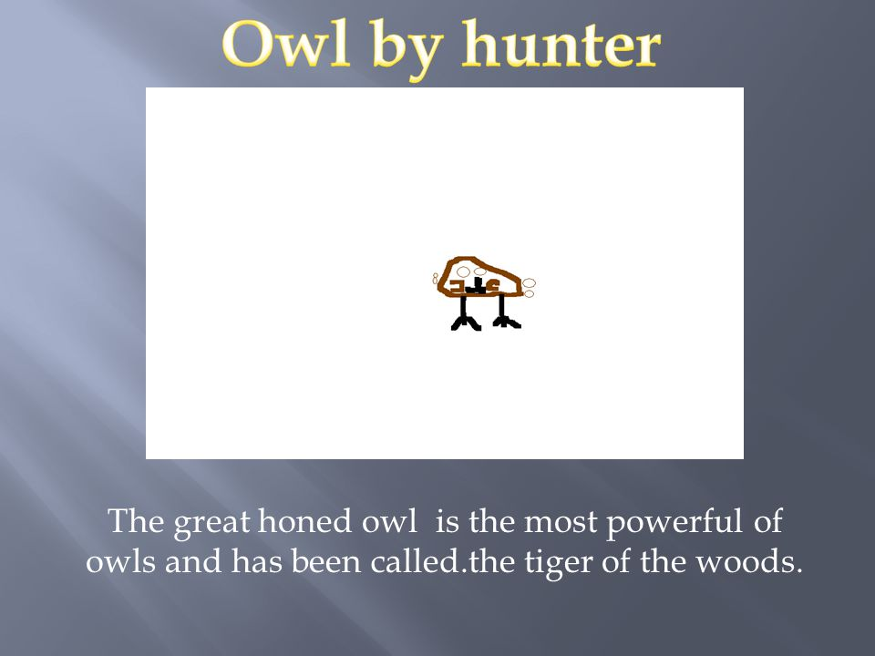 Owl by hunter The great honed owl is the most powerful of owls and has been called.the tiger of the woods.