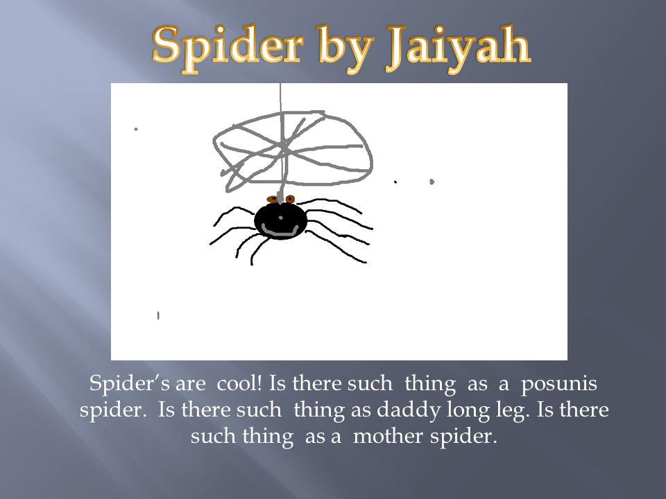 Spider by Jaiyah
