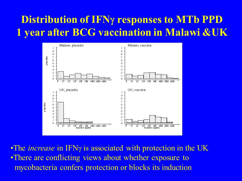 Distribution of IFNg responses to MTb PPD 1 year after BCG vaccination in Malawi &UK