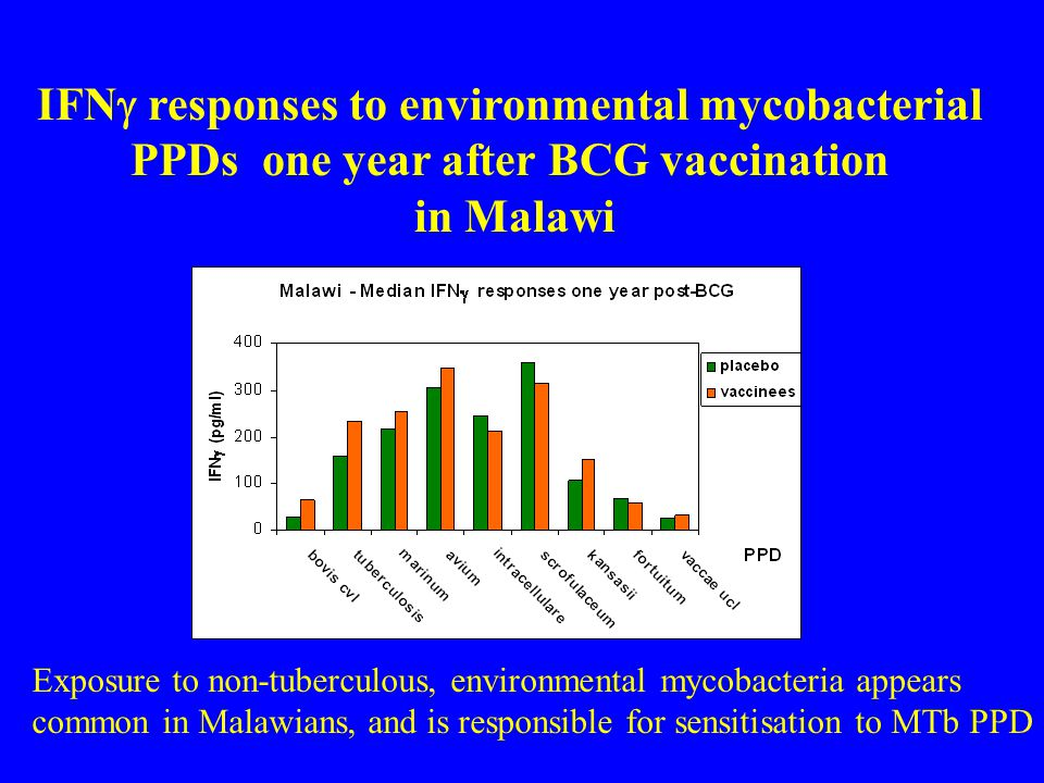 IFNg responses to environmental mycobacterial