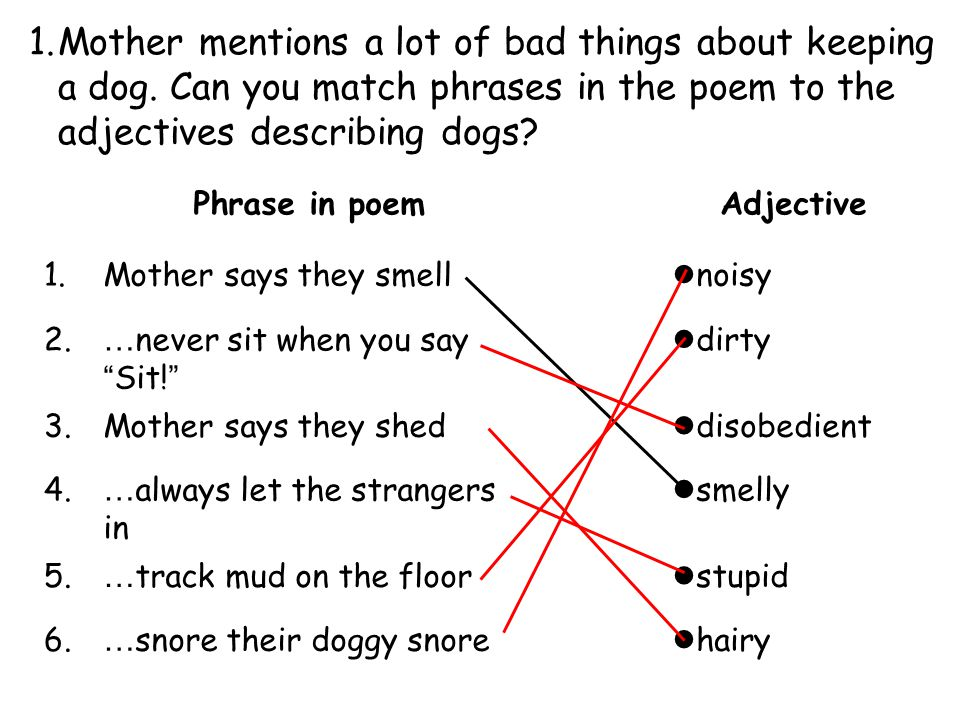 1. Mother mentions a lot of bad things about keeping a dog