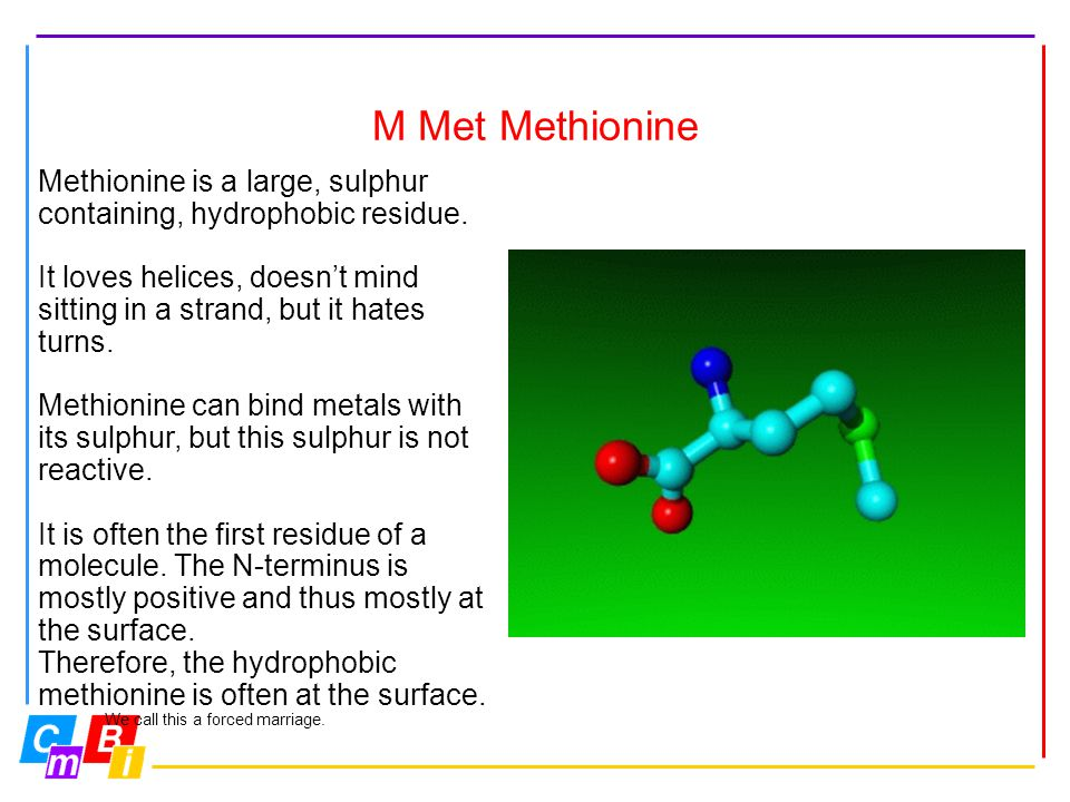 M Met Methionine Methionine is a large, sulphur