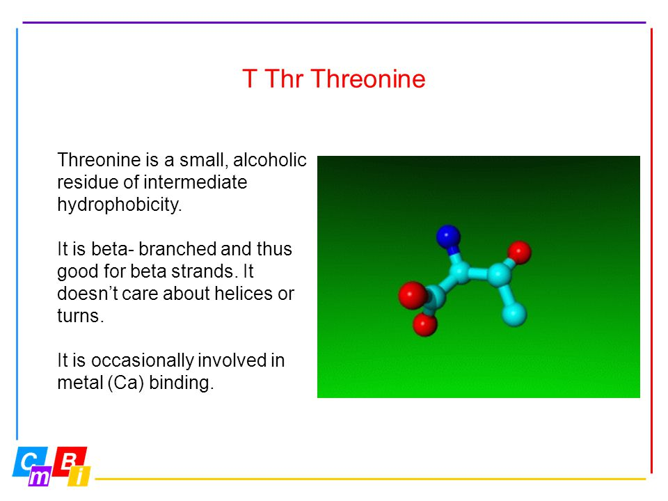 T Thr Threonine Threonine is a small, alcoholic