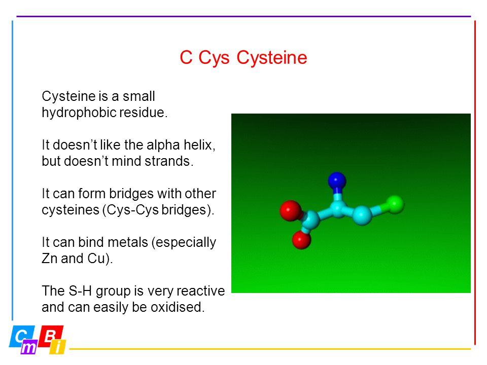 C Cys Cysteine Cysteine is a small hydrophobic residue.
