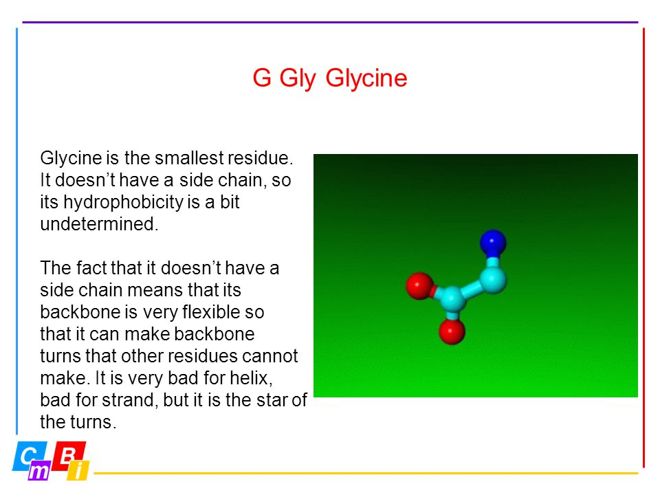 G Gly Glycine Glycine is the smallest residue.