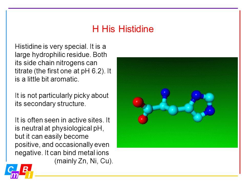 H His Histidine